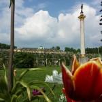 Sanssouci mit Blume